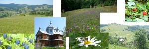 Юный курорт Закарпатья – Верхний Студеный
