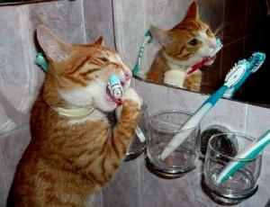 Самодельная паста для отбеливания зубов
