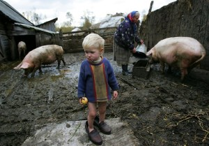 Непольский Юрий стих «К бабушке в деревню»