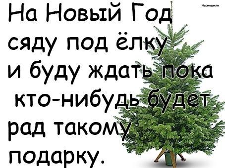 2651956_prikolnye-novogodnie-kartinki-2013