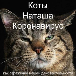 Мем Наташа Коты Коронавирус