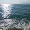 Морская прогулка. Волны