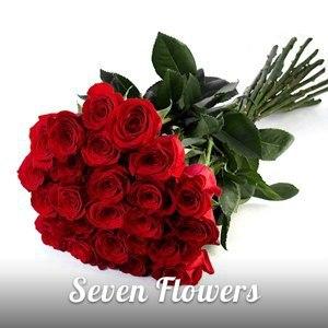 Красная роза – эмблема любви. Почему?