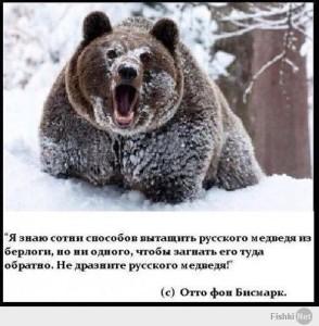 Не будите медведя! (в копилку патриотизма).