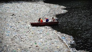 Задание по окружающему миру (3 класс) : доклад «Проблема бытовых отходов».