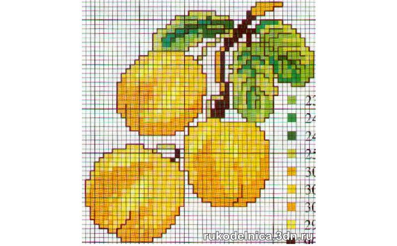 Вышивка крестом абрикос схемы 49