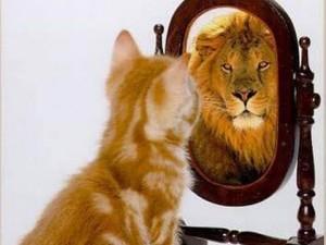 Как формируется личностная самооценка